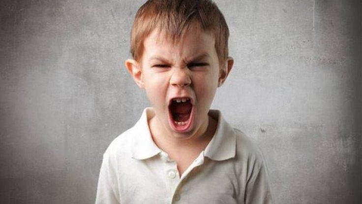 Çocukta Öfke